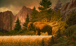 Buffalo in the Rocky Mountains royalty free illustration