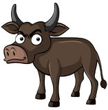 Buffalo with serious face. Illustration Royalty Free Stock Image