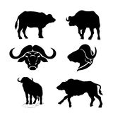 Buffalo set vector. Buffalo set of silhouettes vector vector illustration