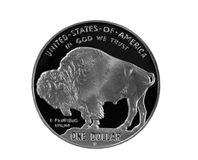Buffalo Silver Coin Stock Photography