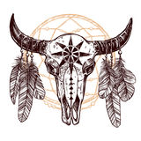 Buffalo Skull With Feathers And Dreamcatcher Stock Photo