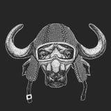 Buffalo, toro, bue Hemlet d'annata del motociclo Retro illustrazione di stile con il motociclista animale per i bambini, abbiglia illustrazione di stock