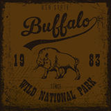 Buffalo vintage outdoor. Wilderness and nature exploration,vintage outdoor, vintage graphics, t-shirt graphic, vintage outdoor design for apparel Stock Images