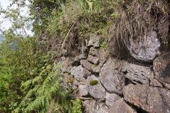 Buffalo wall in Volcanoes National Park, Virunga, Rwanda. Stone wall called the Buffalo wall seperating wildlife from villagers in Volcanoes National Park Stock Photography