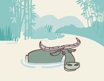 Buffalo in the water. Buffalo bathing in the river Stock Photography