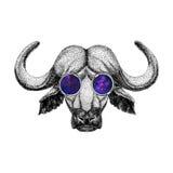 Buffalo wearing hipster glasses Image of bison, bull, buffalo for tattoo, logo, emblem, badge design. Image of bison, bull, buffalo for tattoo, logo, emblem Stock Photo