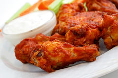 Buffalo Wings Royalty Free Stock Images