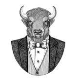 Buffel bison, oxe, dragen bild för tjurHipster djur hand för tatueringen, emblem, emblem, logo, lapp, t-skjorta stock illustrationer