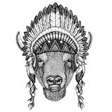 Buffel bison, oxe, löst djur för tjur som bär den indiska hatthuvudbonaden med stam- illustraton fjäderBoho för etnisk bild royaltyfri illustrationer