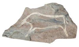 Buffel. Gammal forntida petroglyph Arkivfoto