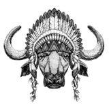 Buffel tjur, löst djur för oxe som bär den indiska hatthuvudbonaden med stam- illustraton fjäderBoho för etnisk bild stock illustrationer