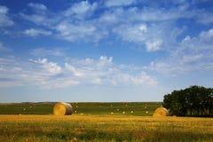 BuffelGap nationella grässlättar, South Dakota Baler av hö i fälten royaltyfri foto