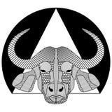 Buffelhuvud, svartvit symmetrisk teckning med mönstrade kläckte delar, tatueringmall, T-tröja som skrivar ut, klubbatotem Royaltyfri Fotografi