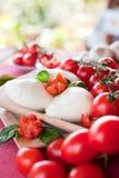 Buffelmozzarellabasilika och tomater Arkivfoto