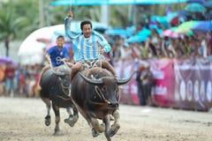 Buffels het Rennen Royalty-vrije Stock Foto's