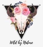 Buffelskalle som dekoreras med blommor royaltyfri illustrationer