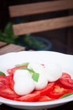 Buffelsmozarella en tomatensalade Stock Foto