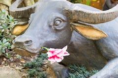 Buffelsstandbeeld met valse bloem in de mond Royalty-vrije Stock Foto