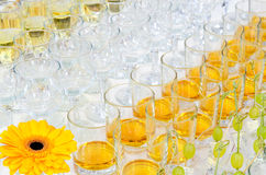 Buffet alcohol drinks Stock Images