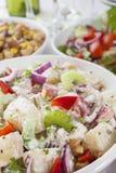 Buffet dell'insalata Fotografia Stock Libera da Diritti