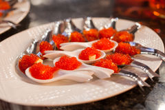 Buffet with red caviar, red caviar close-up in white spoons, res royalty free stock photography