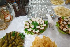 Buffet with snacks bacon and cucumber, traditional Ukrainian snack. party or pub concept.  royalty free stock photography