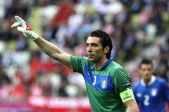 Buffon Royaltyfri Foto