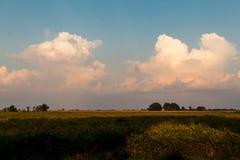 Bufiaste cumulus chmury na jaskrawym pełnia lata ranku nad Illinois ziemią uprawną, obraz stock