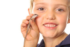 Bug boy with lizard. Isolated on white stock photography