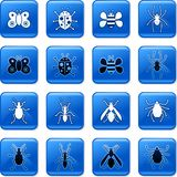 Bug buttons. Collection of blue square bug rollover buttons Royalty Free Stock Images
