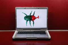 Bug in the computer Royalty Free Stock Image