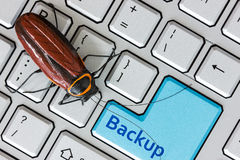 Bug on the computer keybord Royalty Free Stock Photography