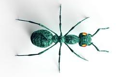 Bug di concetto di sicurezza di Digital isolato su bianco, illust 3D Fotografia Stock