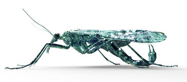 Bug di concetto di sicurezza di Digital isolato su bianco, illust 3D illustrazione di stock