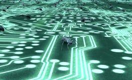 Bug di concetto di sicurezza di Digital nell'ambiente elettronico Fotografie Stock