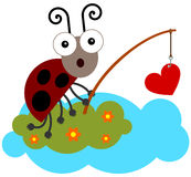 Bug fished love Royalty Free Stock Photo