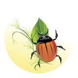 Bug among a foliage Royalty Free Stock Image
