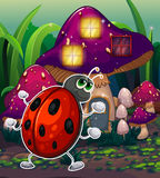 A bug in front of the lighted mushroom house Royalty Free Stock Image