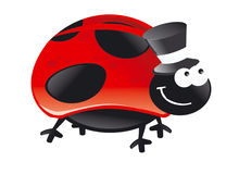 Bug hat red polka dots black smile happy fly Stock Photography