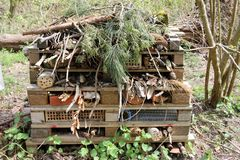 Bug hotel made from pallets. Bug hotel for insects and other animals made from pallets with logs, clay pots, bricks, grass, twigs and topped by conifer branches stock photo