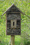 Bug house Stock Images
