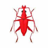 Bug icon, cartoon style. Bug icon in cartoon style isolated on white background royalty free illustration
