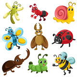Bug Icons Royalty Free Stock Image