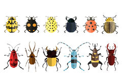 Bug icons. Insect set. Vector illustration of bugs.  on a white background. Beetle icons. Insect set Stock Photo