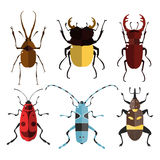 Bug icons. Insect set. Royalty Free Stock Photos