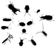 Bug insect silhouettes. Raster set Stock Photos