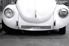 bug love Στοκ φωτογραφίες με δικαίωμα ελεύθερης χρήσης
