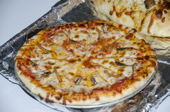 Free Bug Pizza Royalty Free Stock Image - 45139886