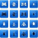 bug przyciski Obrazy Royalty Free