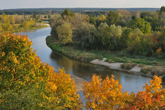 Bug river in autumn Stock Image